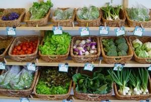 comida ecologica, hortalizas ecológicas, ecología, trazabilidad, downshifting,