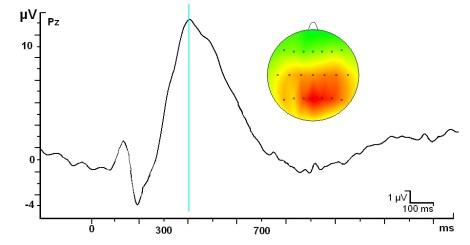 Uno de los componentes más estudiados que se obtienen con la técnica del promediado en los Potenciales Evocados Cognitivos es el llamado P300 (en el eje horizontal el tiempo en milisegundos, en el eje vertical la amplitud. Positividad arriba, negatividad abajo).