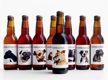 (8) Cerveza artesanal Kombucha Dog